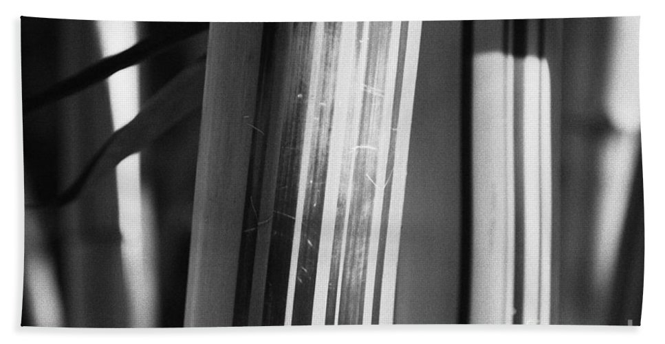 Bamboo Bath Sheet featuring the photograph Bamboo Closeup by Gaspar Avila
