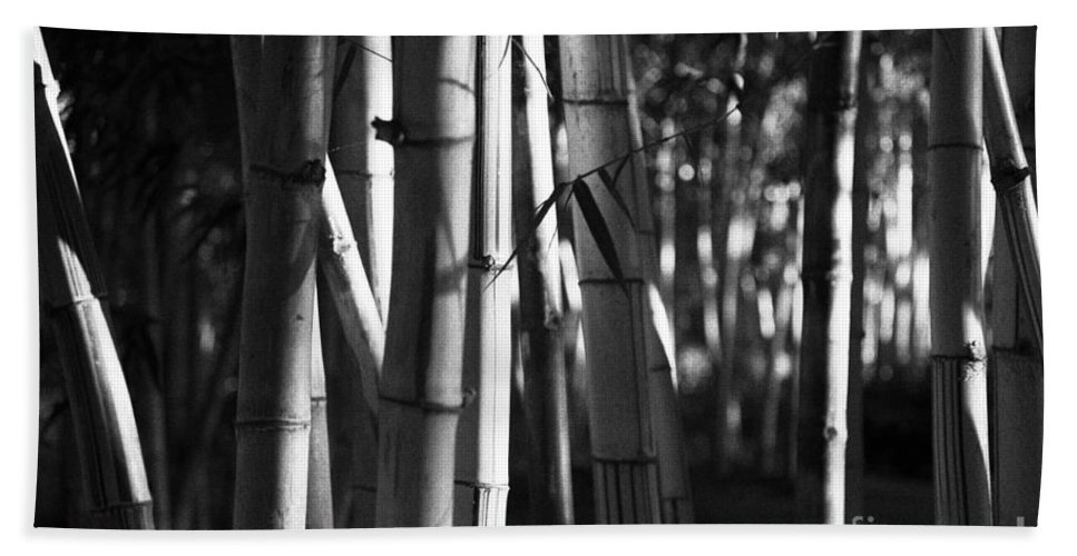 Bamboo Bath Sheet featuring the photograph Bamboo Forest by Gaspar Avila