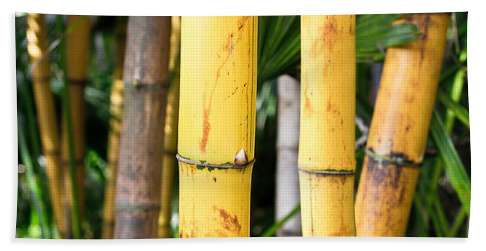 Abstract Hand Towel featuring the photograph Bamboo by Tom Gowanlock
