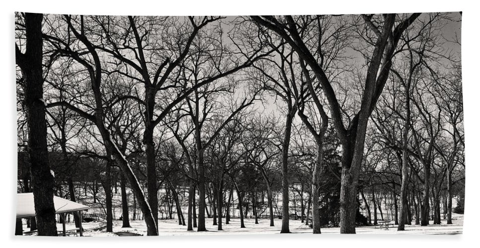 Winter Scene Bath Sheet featuring the photograph Bare by Edward Peterson