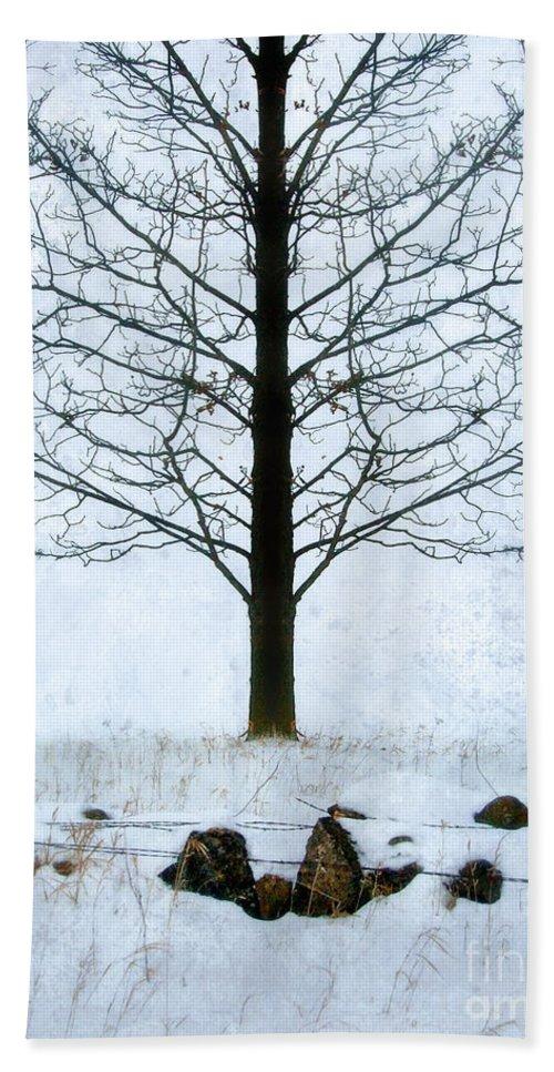 Rural Bath Sheet featuring the photograph Bare Tree In Winter by Jill Battaglia