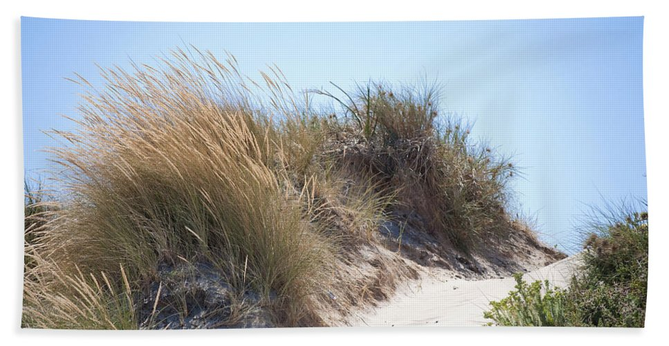 Beach Hand Towel featuring the photograph Beach Sand Dunes I by Michelle Wrighton
