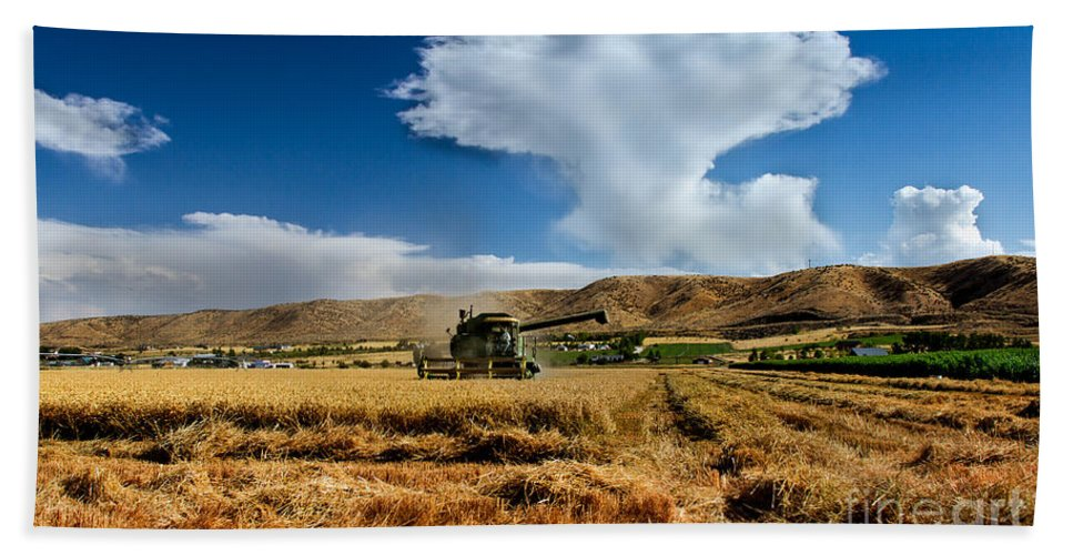 Wheat Bath Sheet featuring the photograph Beating The Strom by Robert Bales