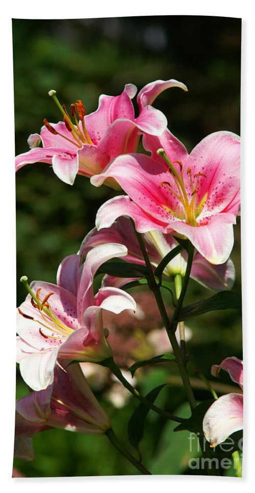 Flowers Bath Sheet featuring the photograph Beautiful Lilys by Randy Harris