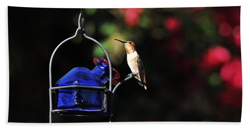 Hummers Bath Sheet featuring the photograph Beauty Defined by Lynn Bauer