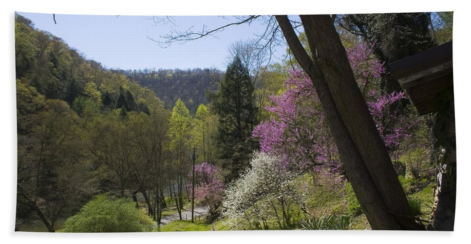 Spring Bath Sheet featuring the photograph Beauty Of Spring by Andrei Shliakhau
