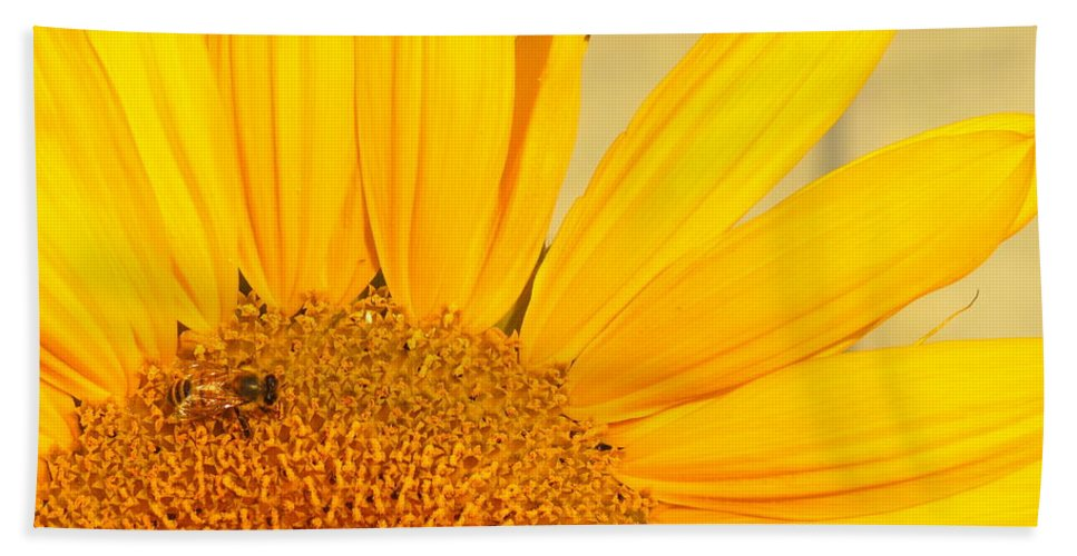 Bee Hand Towel featuring the photograph Bee On Sunflower by Kimberly Castor