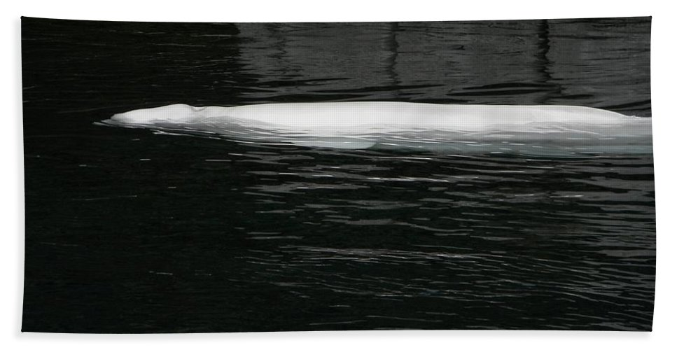 Beluga Hand Towel featuring the photograph Beluga Impressions 1 by Marwan George Khoury