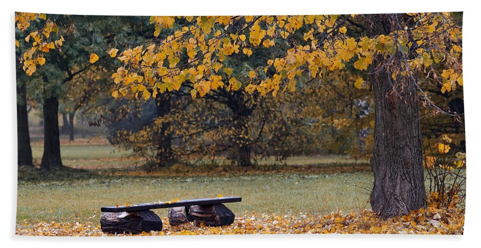 Atmosphere Hand Towel featuring the photograph Bench In The Autumn Landscape by Michal Boubin