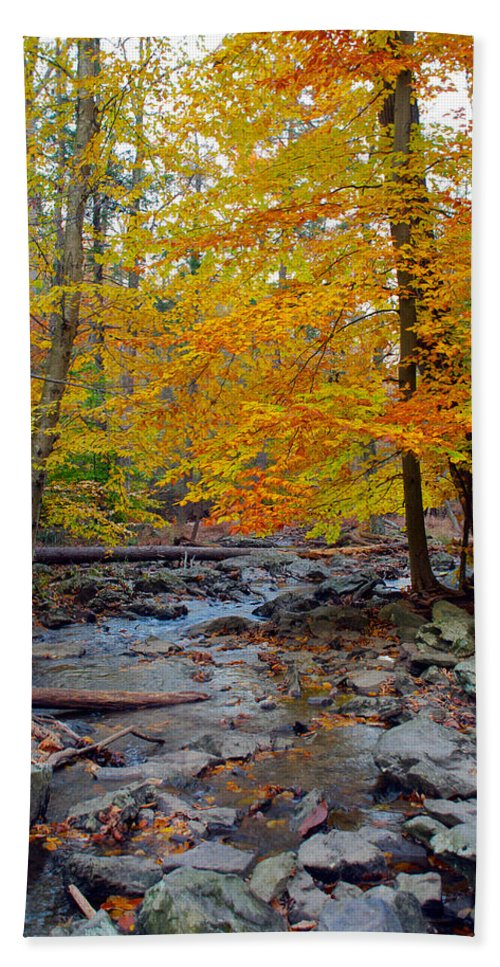 Cunningham Falls Hand Towel featuring the photograph Big Hunting Creek Down Stream From Cunningham Falls by Mark Dodd