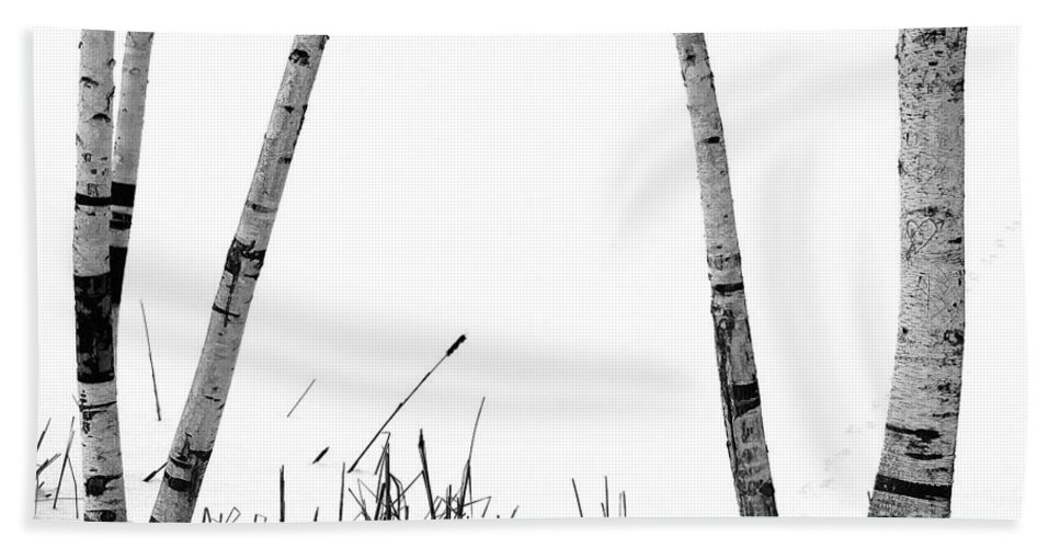 Birch Trees Bath Sheet featuring the photograph Birch Trees In Snow by Mike Nellums