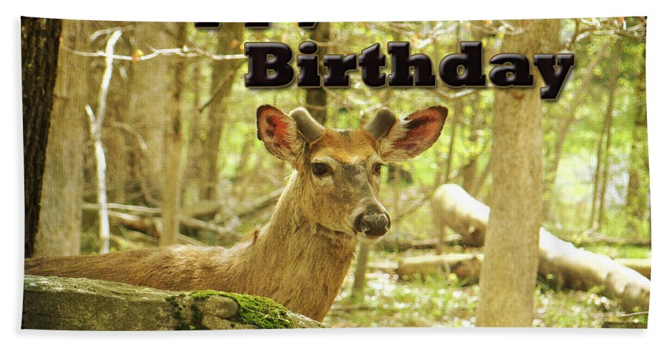 Birthday Hand Towel featuring the photograph Birthday Greeting Card - Whitetail Deer Buck In Velvet by Mother Nature