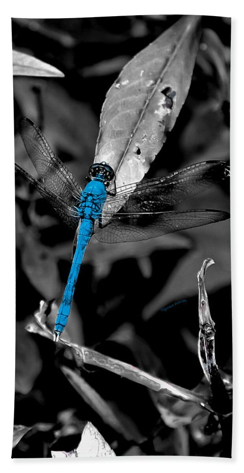 Dragonfly Bath Sheet featuring the photograph Black And Blue by DigiArt Diaries by Vicky B Fuller