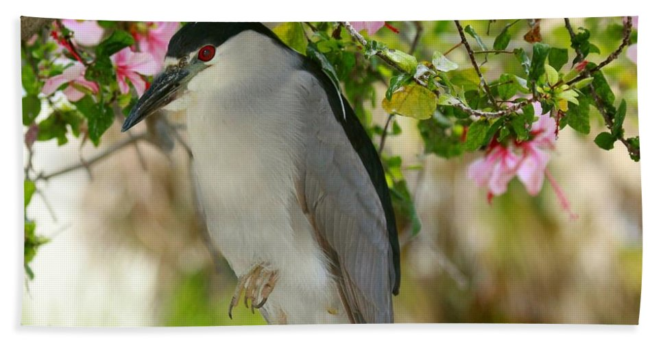 black Crown Night Heron Hand Towel featuring the photograph Black Crown In The Flowers by Myrna Bradshaw
