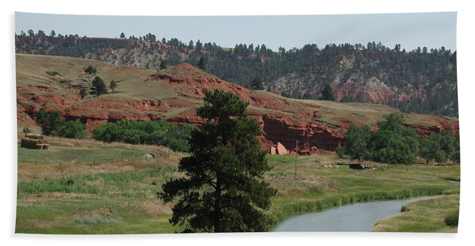 Sturgis Bath Sheet featuring the photograph Black Hills Landscape by Anna Ruzsan