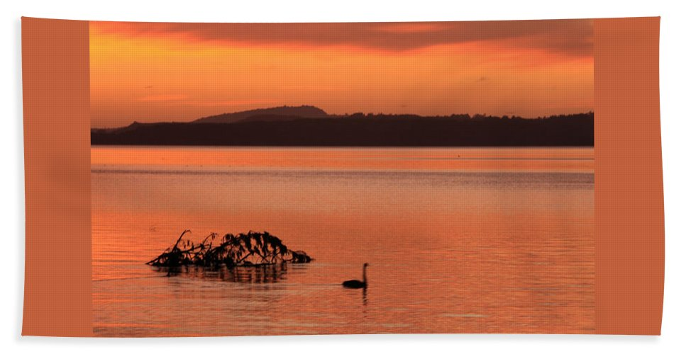 Hand Towel featuring the photograph Black Swan Swims In Rotortua by Rebecca Akporiaye