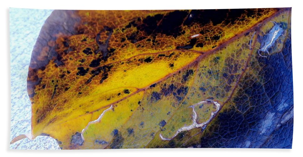 Leaves Bath Sheet featuring the photograph Blacklight Poster by Trish Hale