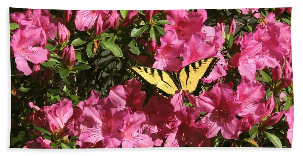 Nature Bath Sheet featuring the photograph Blaze Of Spring by Peg Urban