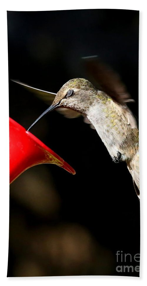 Hummingbird Bath Sheet featuring the photograph Blink And You'll Miss It by Carol Groenen
