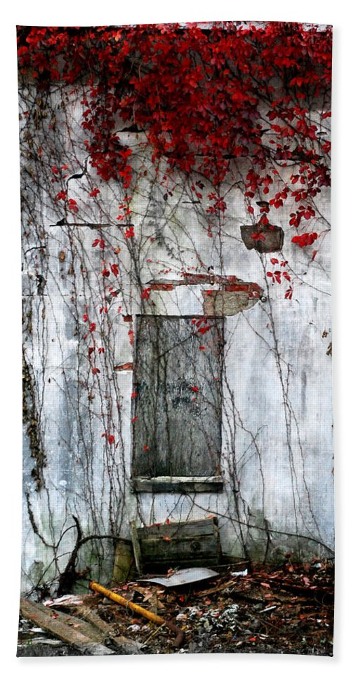 Landscape Hand Towel featuring the photograph Blood Ivy by Mark Orr