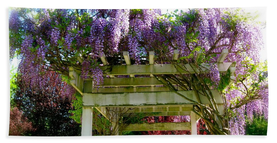 Wisteria Hand Towel featuring the photograph Blooming Wisteria by Nancy Patterson