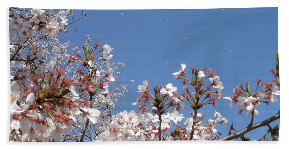 Japanese Cherry Blossom In The Wind Hand Towel featuring the mixed media Blossom 4 by Richard Jones