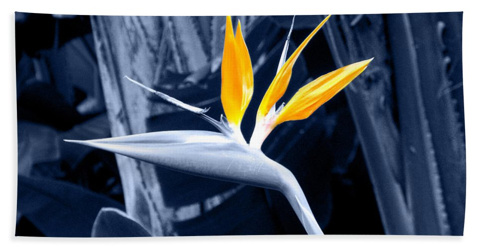 Blue Hand Towel featuring the photograph Blue Bird Of Paradise by Rebecca Margraf