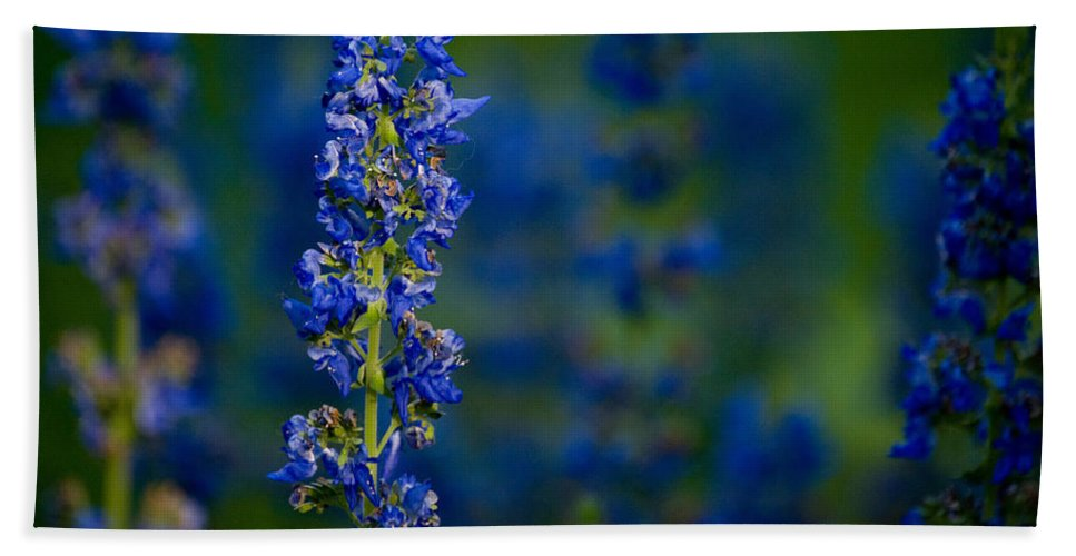 Flower Hand Towel featuring the photograph Blue Bunny by Trish Tritz