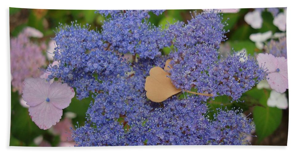 Blue Dot Flowers Hand Towel featuring the photograph Blue Dot by Joseph Yarbrough