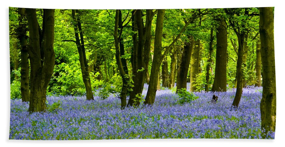 Bluebell Wood Bath Sheet featuring the photograph Bluebell Woods by Brian Roscorla
