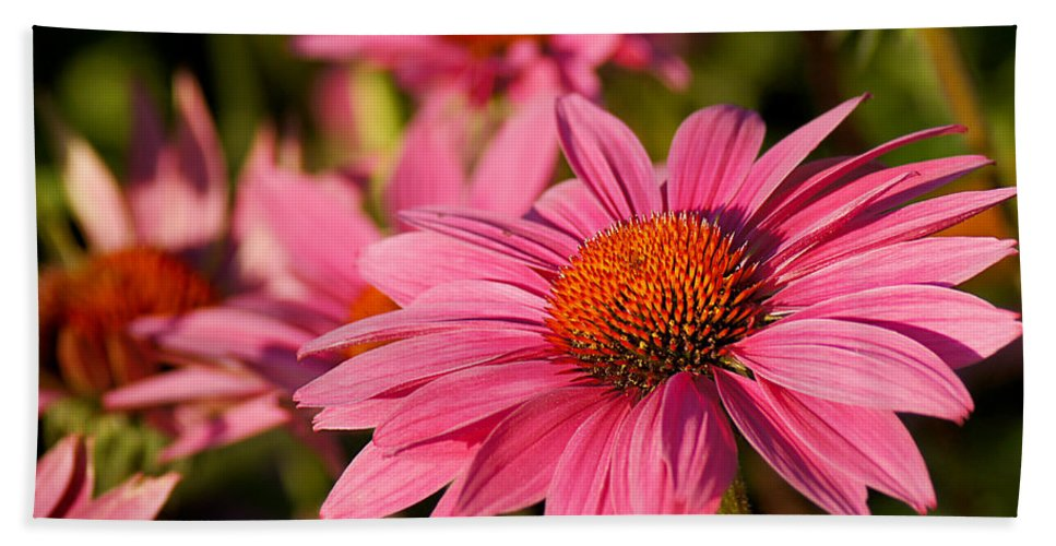 Flower Hand Towel featuring the photograph Bold And Beautiful by Bill Pevlor