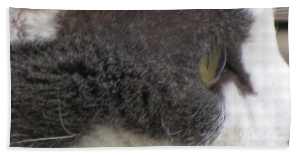 Animal Bath Sheet featuring the photograph Boojer's Eye by Donna Brown