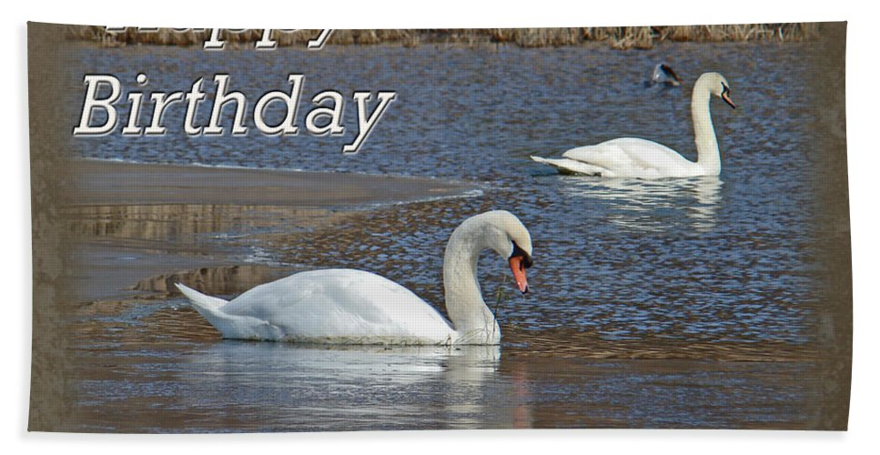 Boss Bath Sheet featuring the photograph Boss Birthday Card - Mute Swans On Winter Pond by Mother Nature