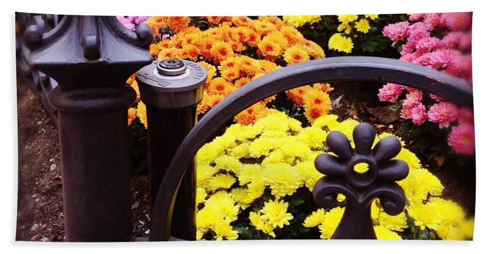 Hand Towel featuring the photograph Boston Flowers by Mark Valentine