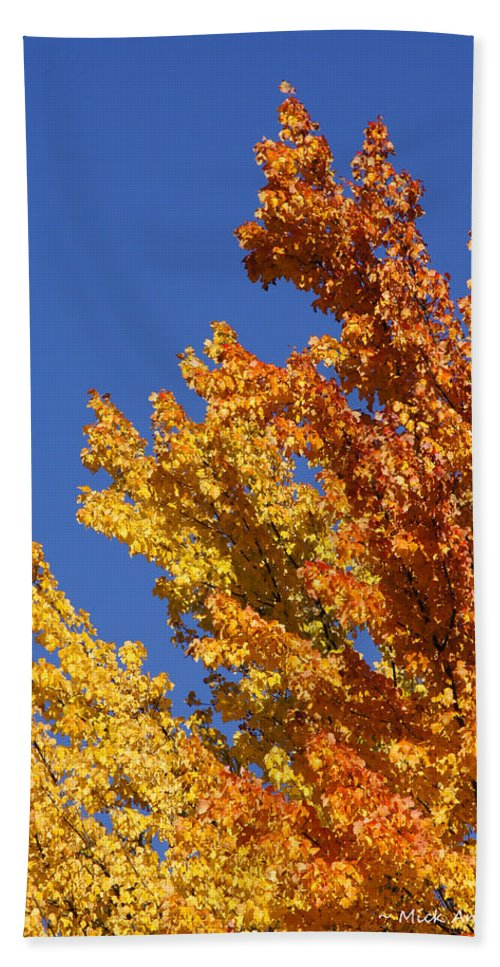 Blue Bath Sheet featuring the photograph Brilliant Fall Color And Deep Blue Sky by Mick Anderson