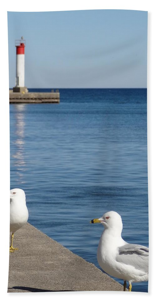 Bronte Hand Towel featuring the photograph Bronte Lighthouse Gulls by Laurel Best
