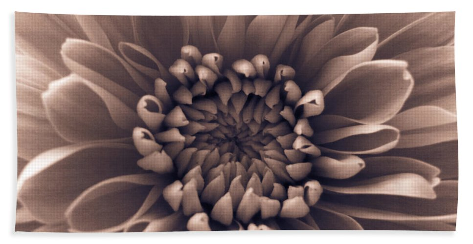 Pink Bath Sheet featuring the photograph Brown Flower by Dawn OConnor