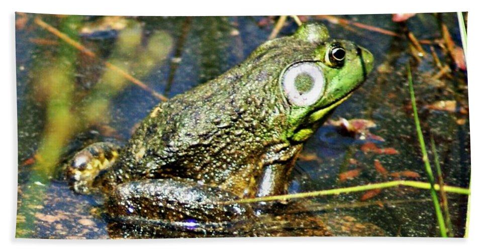 Bullfrog Bath Sheet featuring the photograph Bullfrog 1 by Joe Faherty