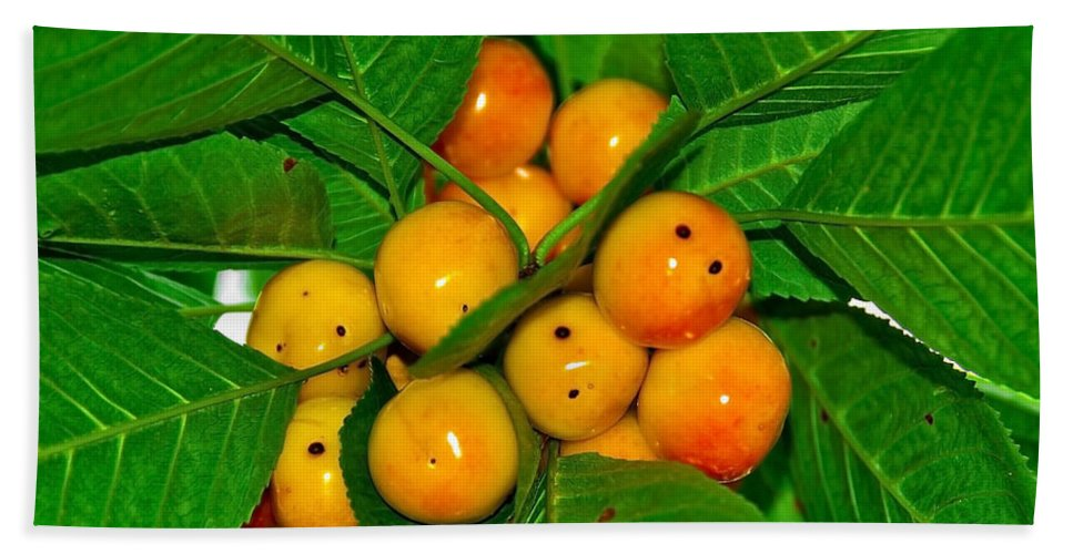 Black Bath Sheet featuring the photograph Bunch Of Cherries by Svetlana Sewell
