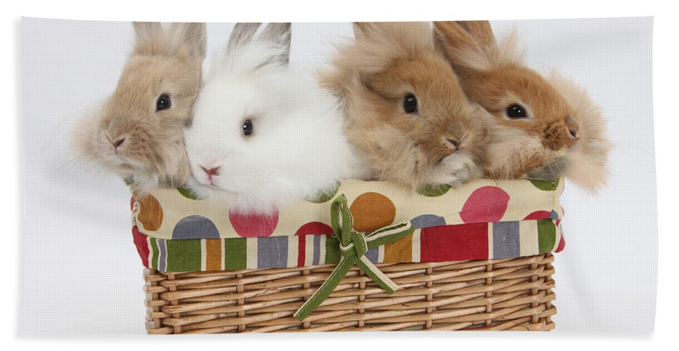 Nature Hand Towel featuring the photograph Bunnies In A Basket by Mark Taylor