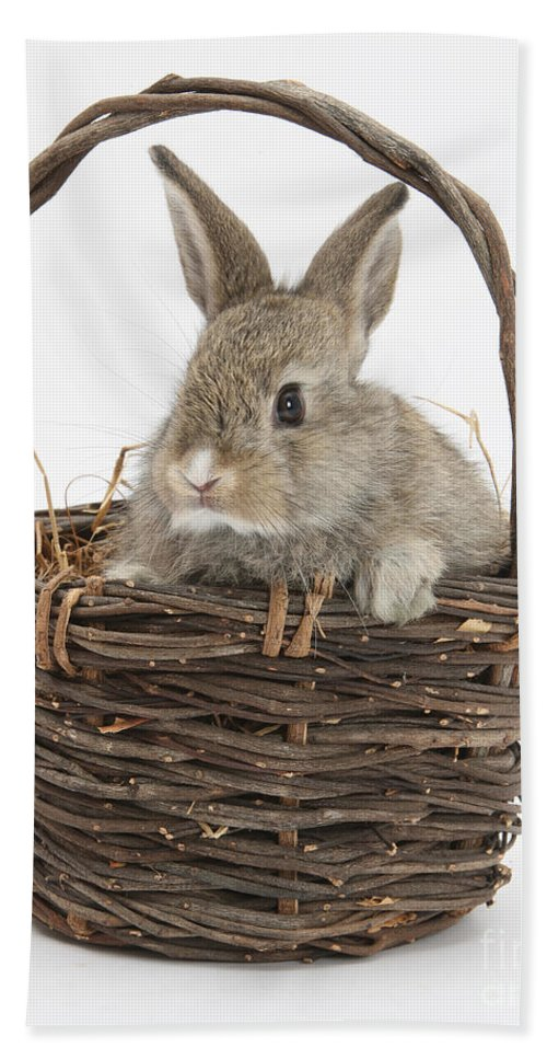 Animal Hand Towel featuring the photograph Bunny In A Basket by Mark Taylor