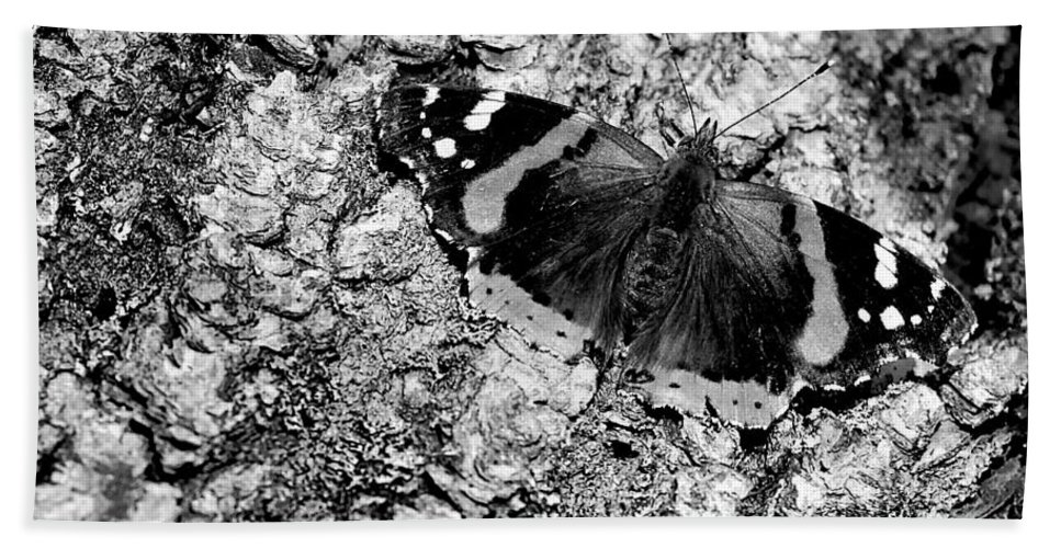Usa Hand Towel featuring the photograph Butterfly Bark Black And White by LeeAnn McLaneGoetz McLaneGoetzStudioLLCcom