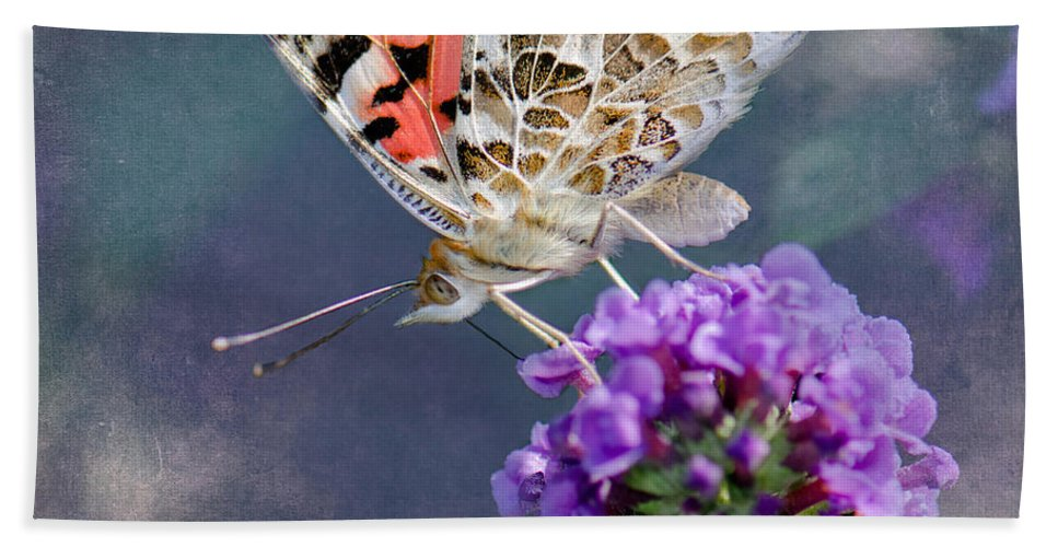Butterfly Bath Sheet featuring the photograph Butterfly Love by Betty LaRue