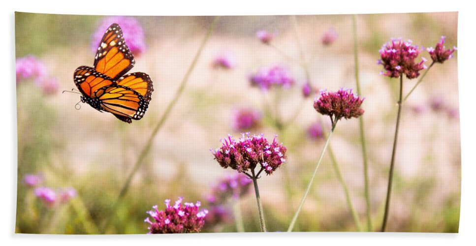 Monarch Bath Sheet featuring the photograph Butterfly - Monarach - The Sweet Life by Mike Savad