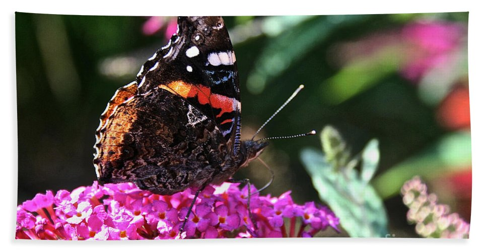 Outdoors Bath Sheet featuring the photograph Butterfly Plant At Work by Susan Herber