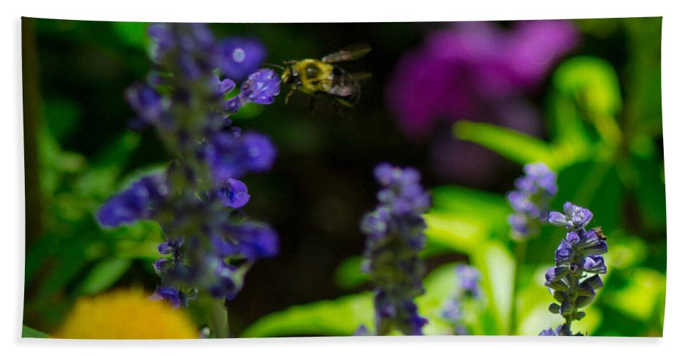 Bumble Bee Hand Towel featuring the photograph Buzzing Around by Shannon Harrington
