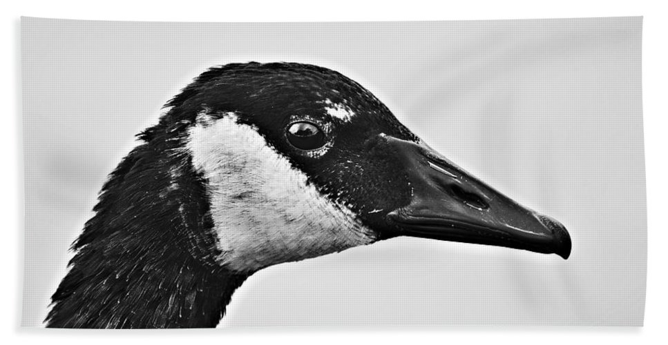 B&w Portrait-canadian Goose Bath Sheet featuring the photograph Bw Portrait-canadian Goose by Douglas Barnard