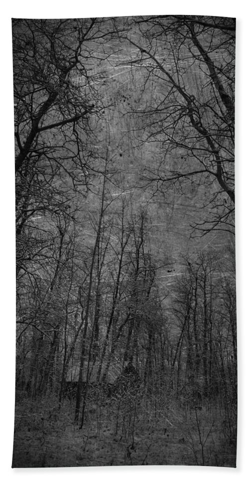 Jerry Cordeiro Framed Prints Photographs Photographs Photographs Bath Sheet featuring the photograph Cabin In The Woods by The Artist Project