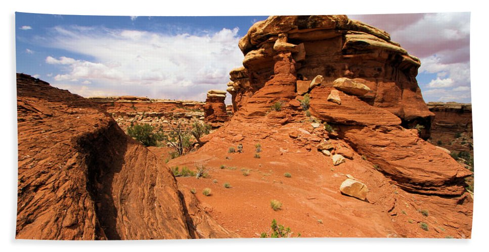 Canyonlands Hand Towel featuring the photograph Canyonlands Textures by Adam Jewell