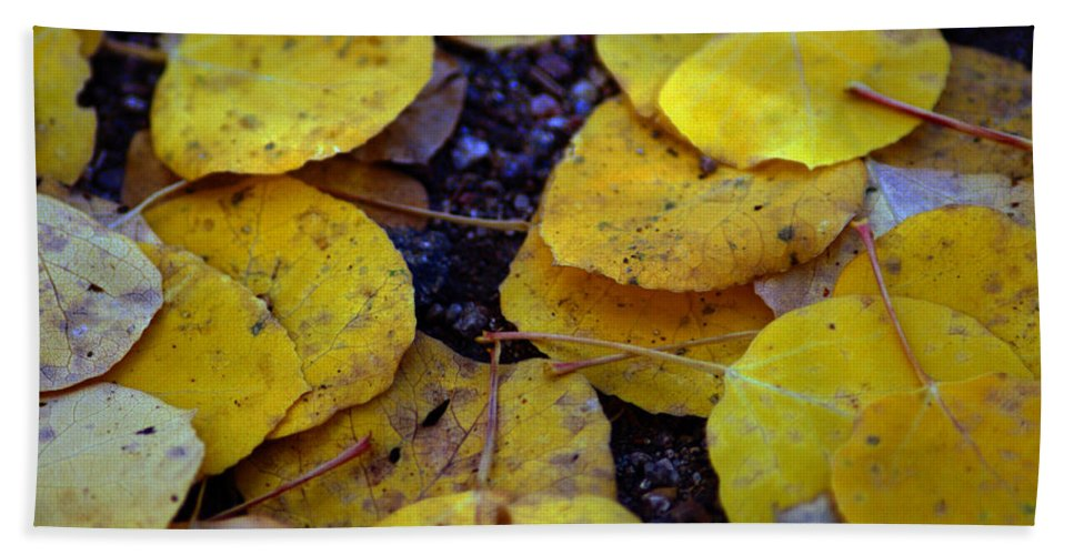 Leaf Hand Towel featuring the photograph Carpet Of Gold by Brian Kerls